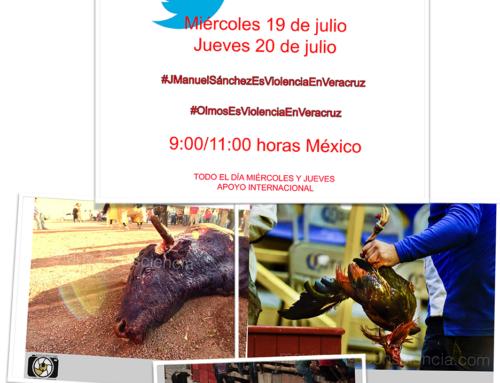 Este jueves quieren votar a favor de la violencia en Veracruz, ¿lo vamos a permitir?