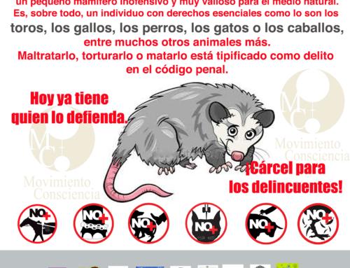 CAMINATAS PACÍFICAS EN PROTESTA POR LOS YA RECURRENTES ACTOS DE CRUELDAD EN CONTRA DE NUESTRA FAUNA SILVESTRE Y ANIMALES DOMÉSTICOS EN VERACRUZ, MÉXICO